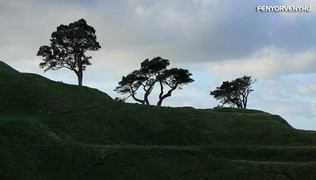 A három fa